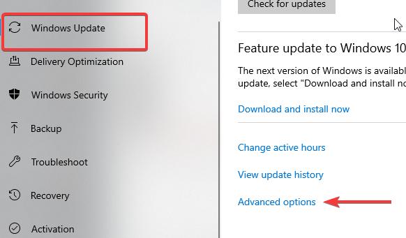 windows updates advance option