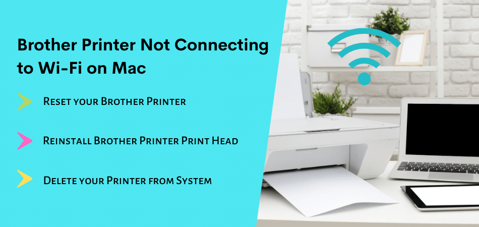 Brother Printer Not Connecting to Wi-Fi on Mac