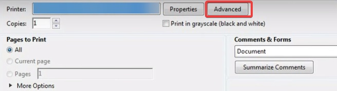 Click on advanced to fix Printer not Printing PDF