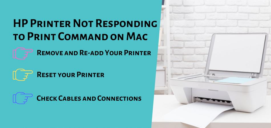 HP Printer Not Responding to Print Command on Mac