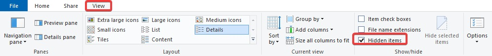 show hidden items to fix Google Chrome Black Screen Issue