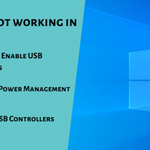 USB Ports not working in Windows 10